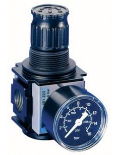 Regulator ciśnienia Typ 481